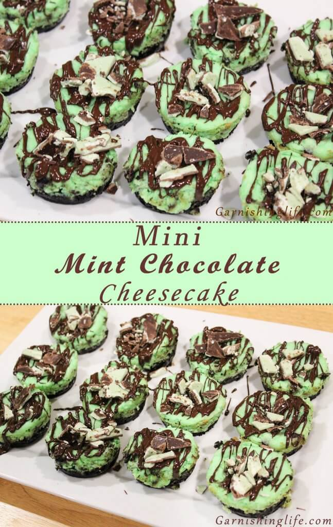 Mini Mint Chocolate Cheesecake